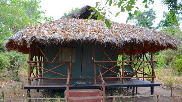 Hytte i Zarafa Tented Camp.