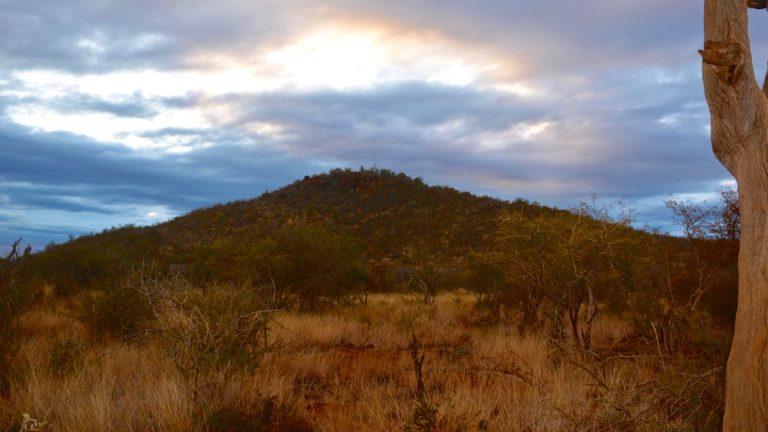 Madikwe National Park.