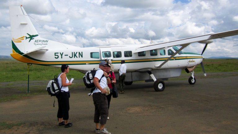 Fly i Masai Mara, Kenya.