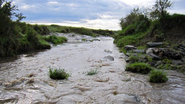 Vandløb i Masai Mara.