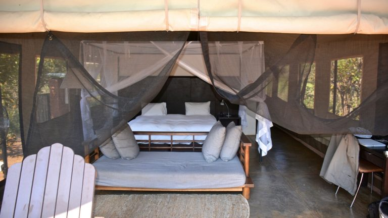 Khoka Moya Camp, Manyeleti, Sydafrika.