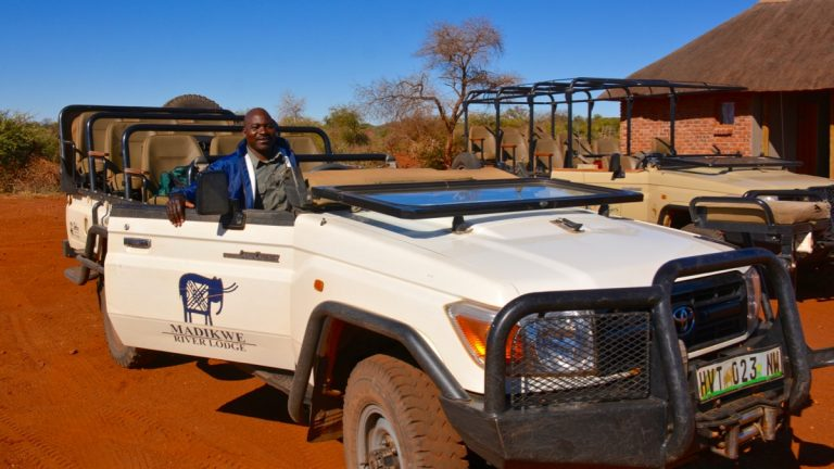 Safaribil i Madikwe, Sydafrika.